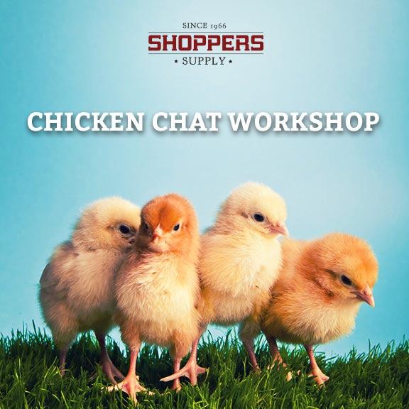 Chicken Chat Workshop